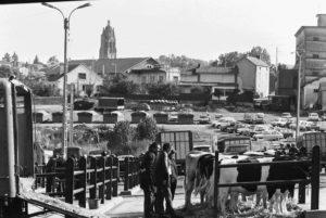 Marché aux bestiaux  au lac de la Chaize, années 1970. Collection Christian Tronquet